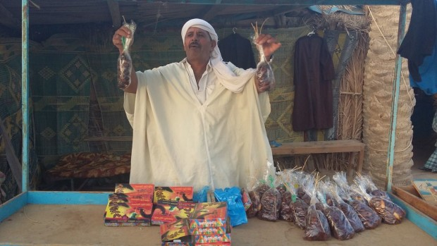 Měsíční reporty affiláků a internetových podnikatelů - motivace pro nás